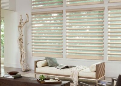 The Austria® Collection of Silhouette® Shadings